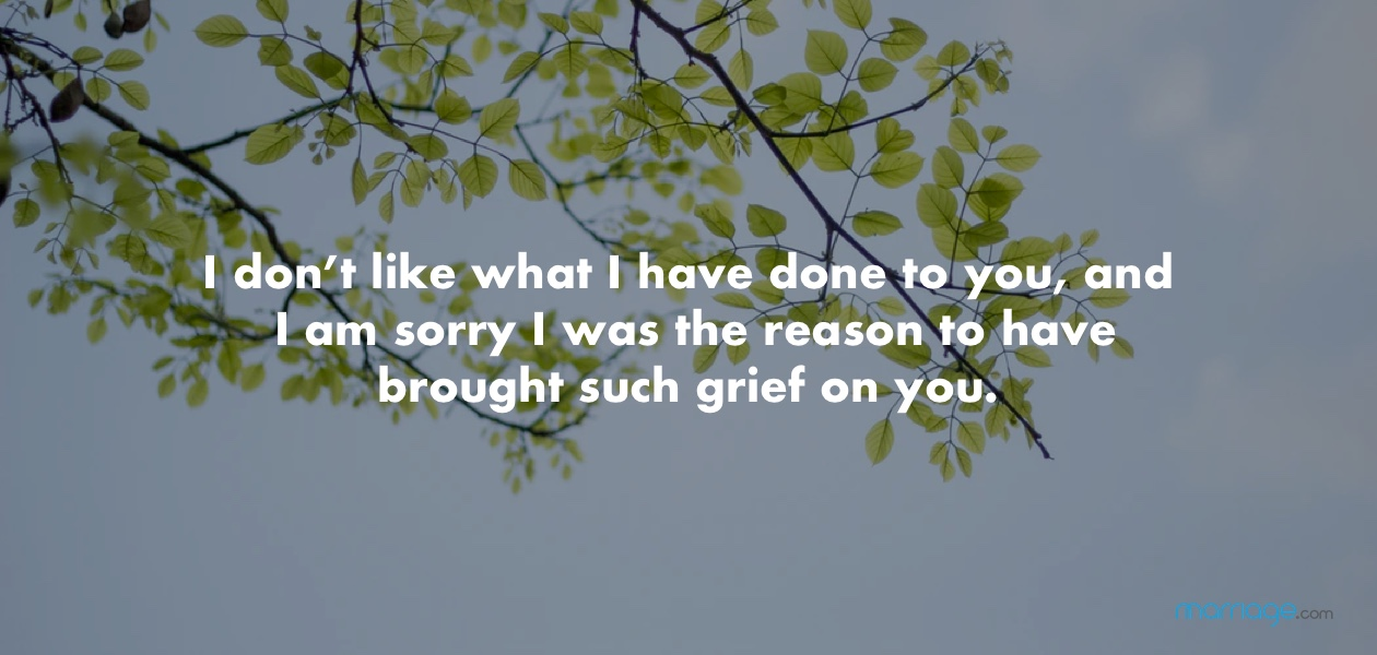I don't like what I have done to you, and I am sorry I was the reason to have brought such grief on you.