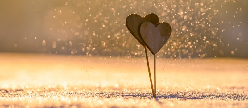 Use each day to express your love