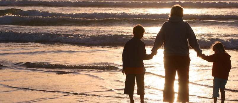 The Experience of Living with a Foster Sibling
