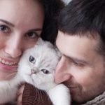 Why Adopting a Cat Can Be Good for Your Marriage