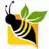 Cash Bees,  Financial Consultant in Douglas, ON
