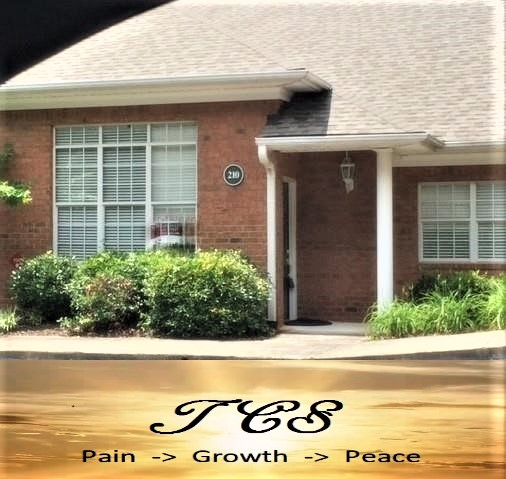 Dr. Shannon Barnes, LPC, Licensed Professional Counselor in Woodstock, GA