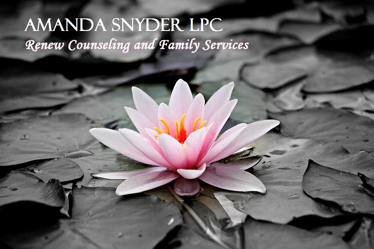 Amanda Twilley Snyder, LMFT, Marriage & Family Therapist