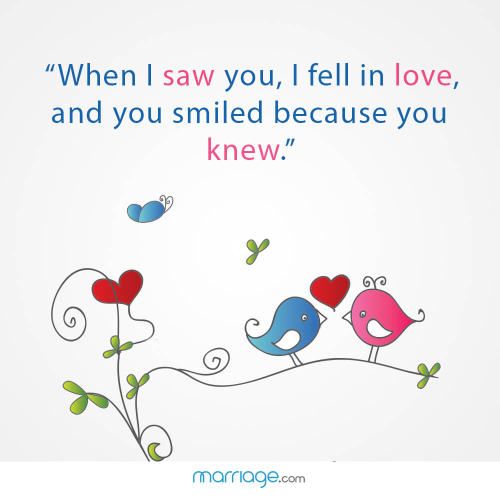 """When i saw you, i fell in love, and you smiled because you knew.\"""