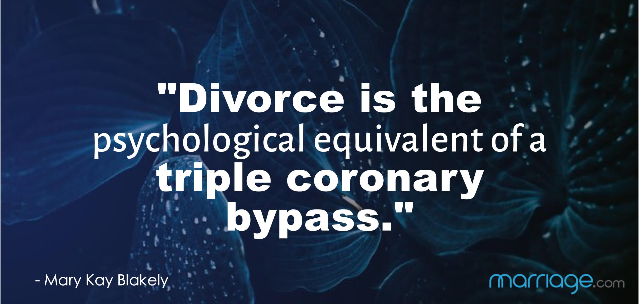 """Divorce is the psychological equivalent of a triple coronary bypass.\"" - Mary Kay Blakely"