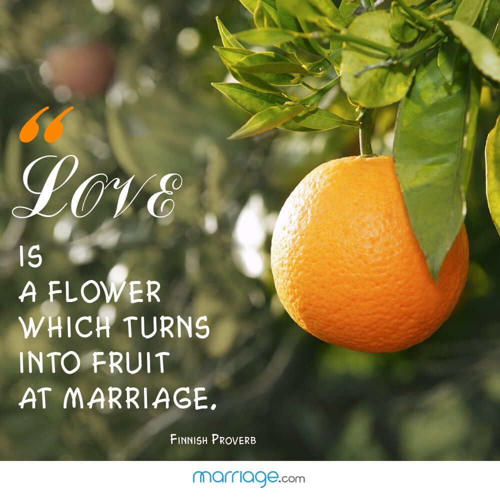 """Love is a flower which turns into fruit at marriage. - Finnish Proverb"