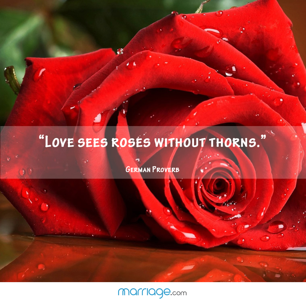 """Love sees roses without thorns."" - German Proverb"