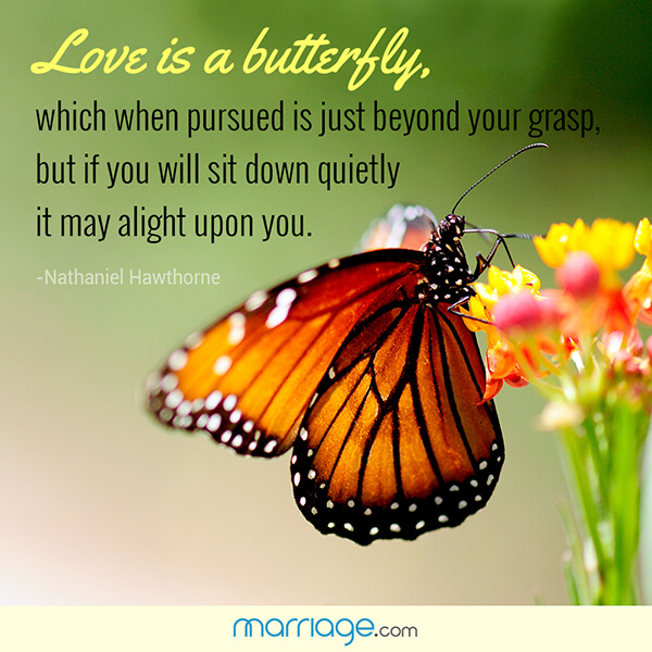 Love Is A Butterfly Which When Pursued Is Marriage Quotes
