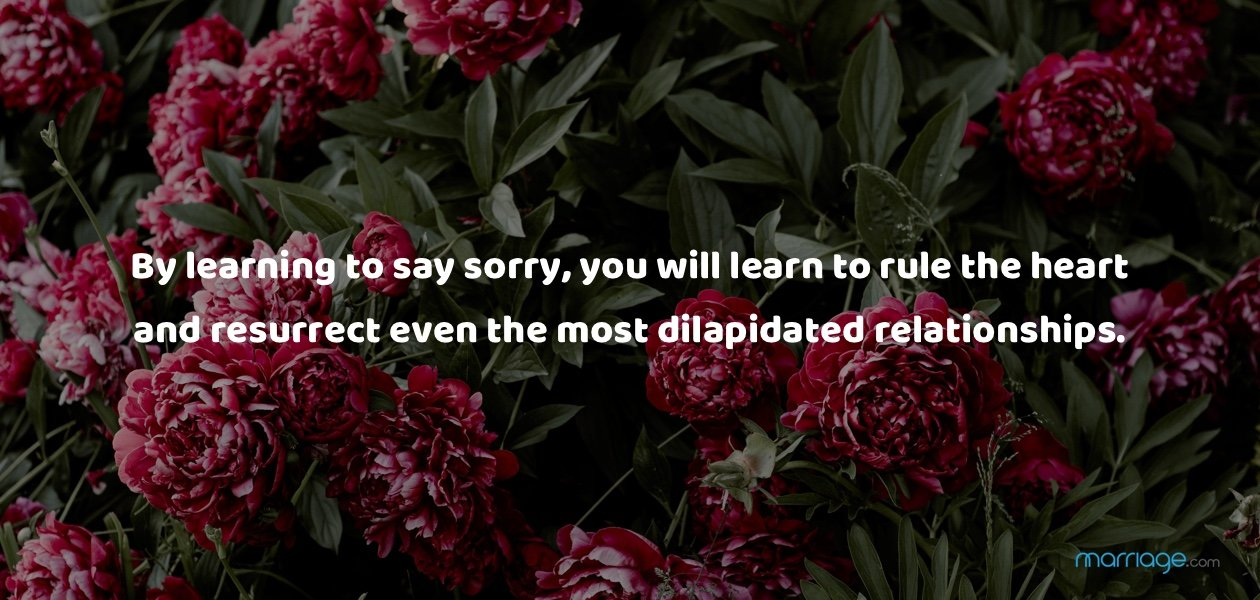 By learning to say sorry, you will learn to rule the heart and resurrect even the most dilapidated relationships.