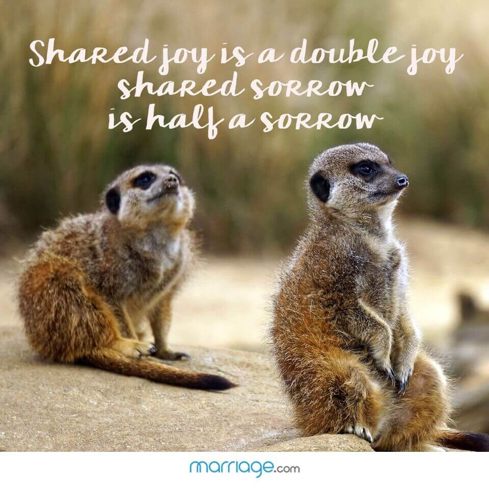 Shared joy is a double joy shared sorrow is half a sorrow