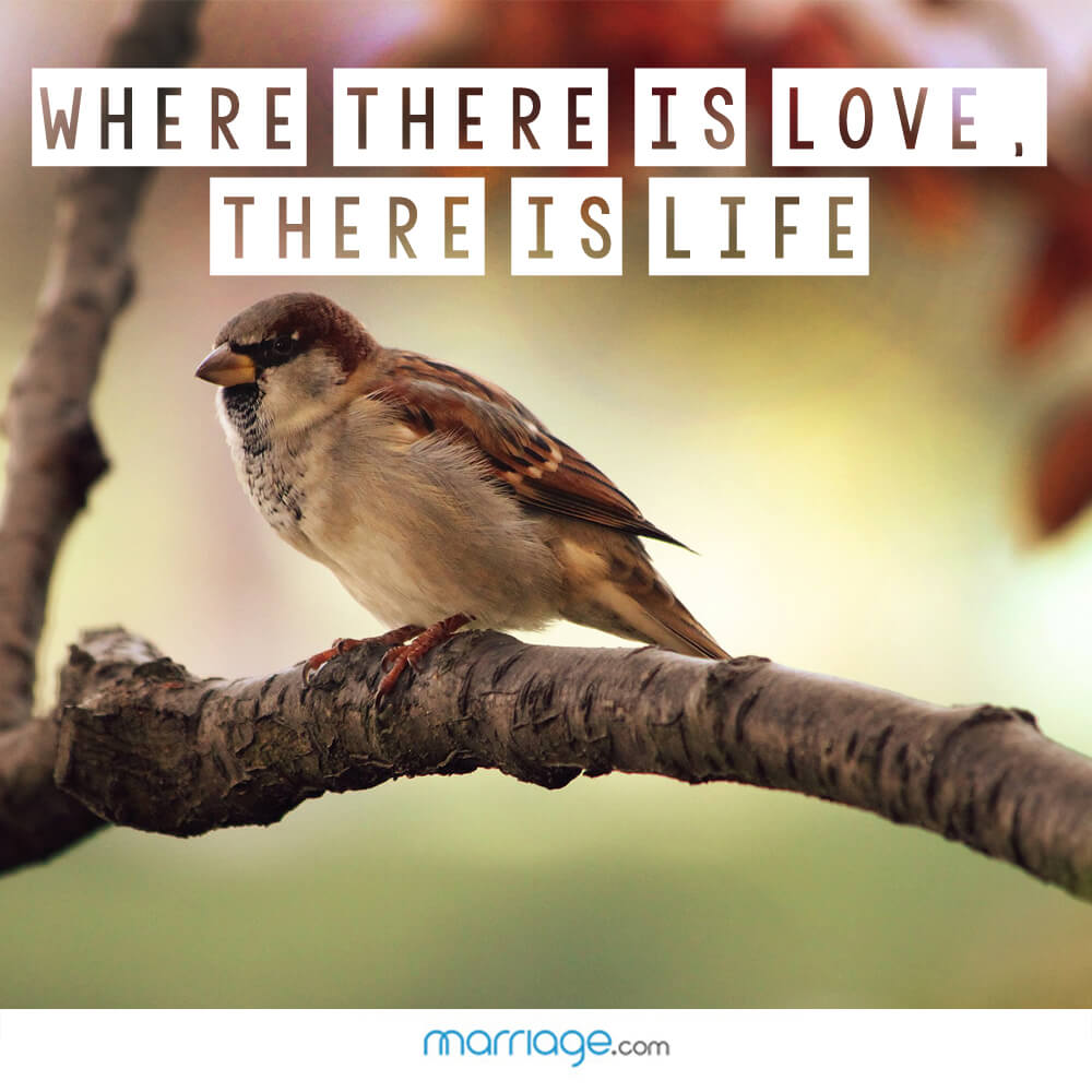 Where there is love, there is life!