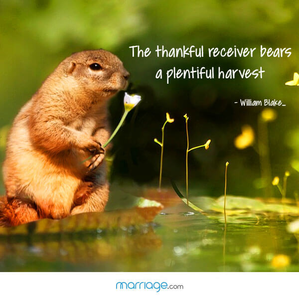 The thankful receiver  bears a plentiful harvest - William Blake-