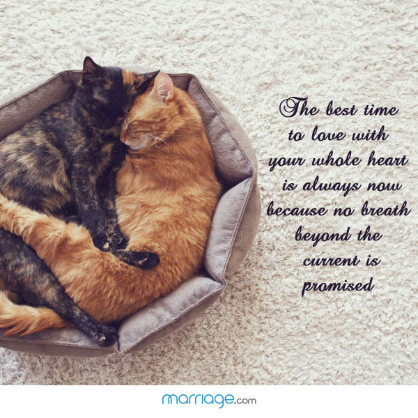 The best time to love with your whole heart is always now because no breath beyond the current is promised