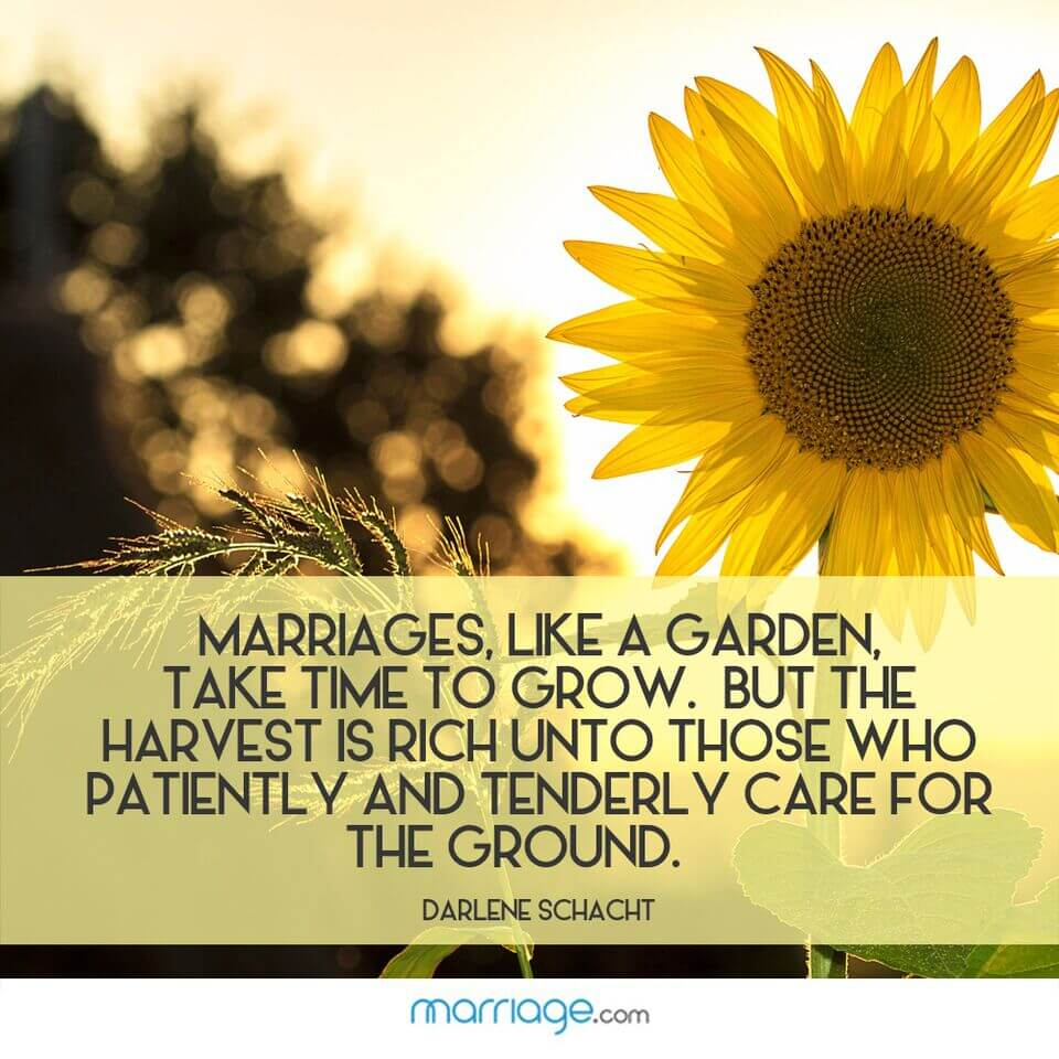 Marriages, like a garden, take time to grow. But the harvest is rich unto those who patiently and tenderly care for the ground. - Darlene Schacht