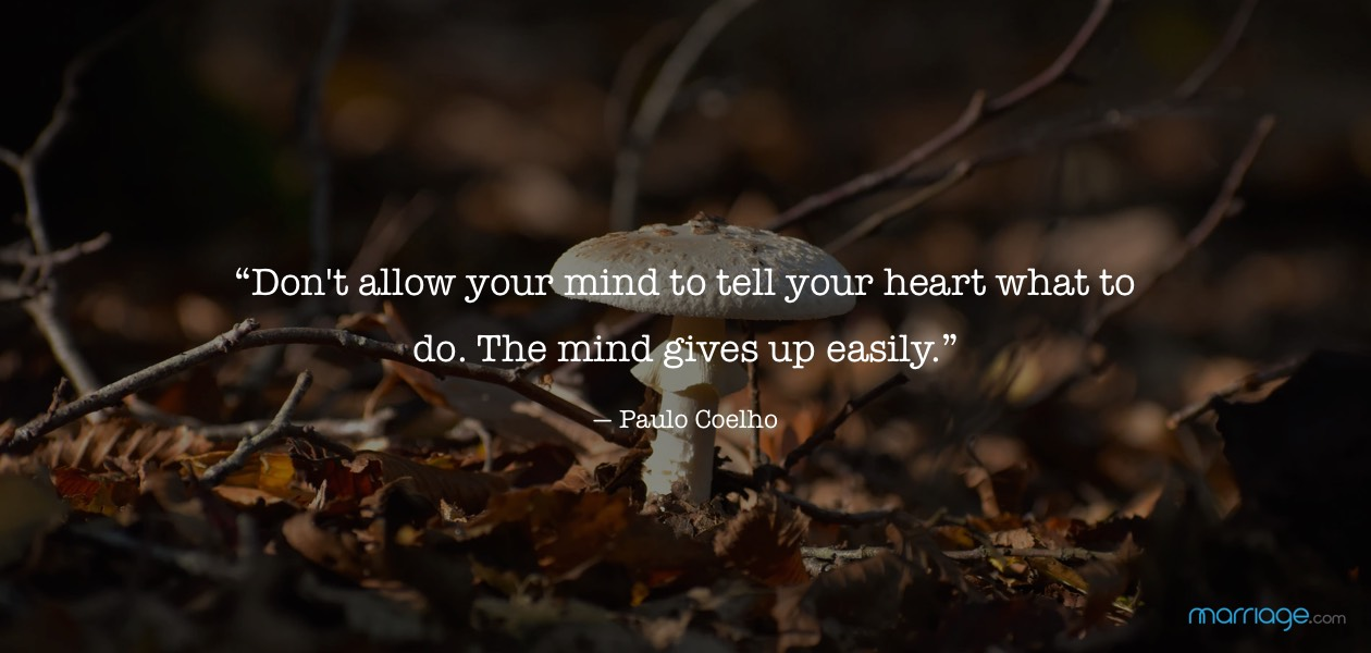 """Don\'t allow your mind to tell your heart what to do. The mind gives up easily."" ― Paulo Coelho"
