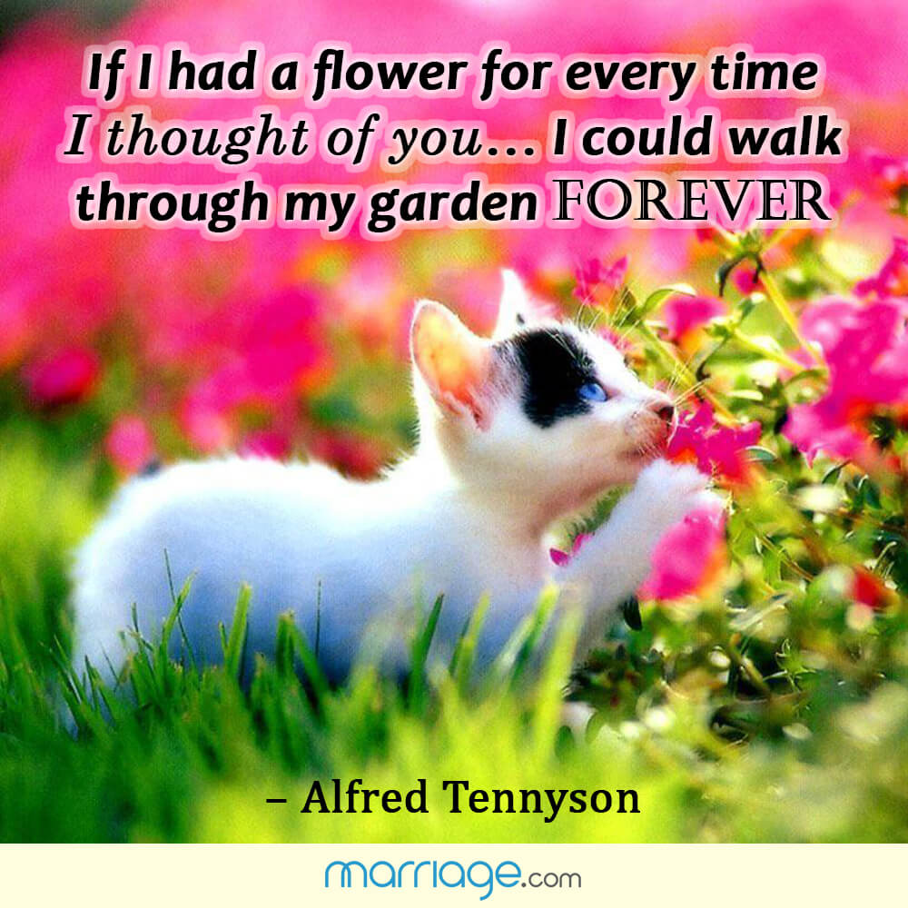 If I had a flower for every time I thought of you... I could walk through my garden forever ! - Alfred Tennyson