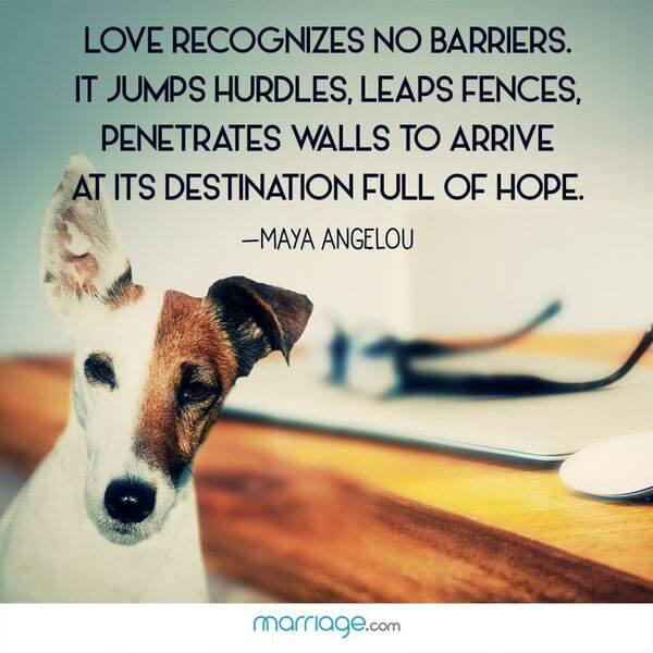 Love recognizes no barriers. It jumps hurdles, leaps fences, penetrates walls to arrive at its destination full of hope. - Maya Angelou