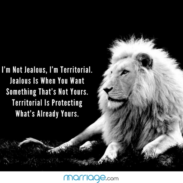 I'm Not Jealous, I'm Territorial. Jealous Is When You Want Something That Is Not Yours. Territorial Is Protecting What's Already Yours.